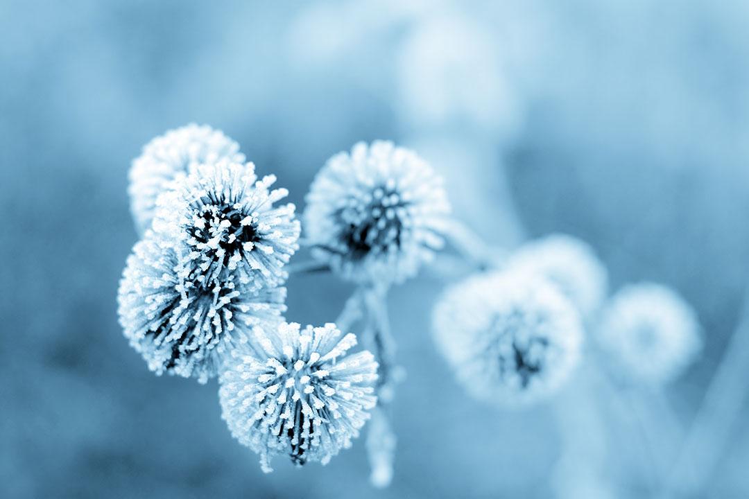 Caldo benessere per il freddo inverno: i benefici del bagno turco ...